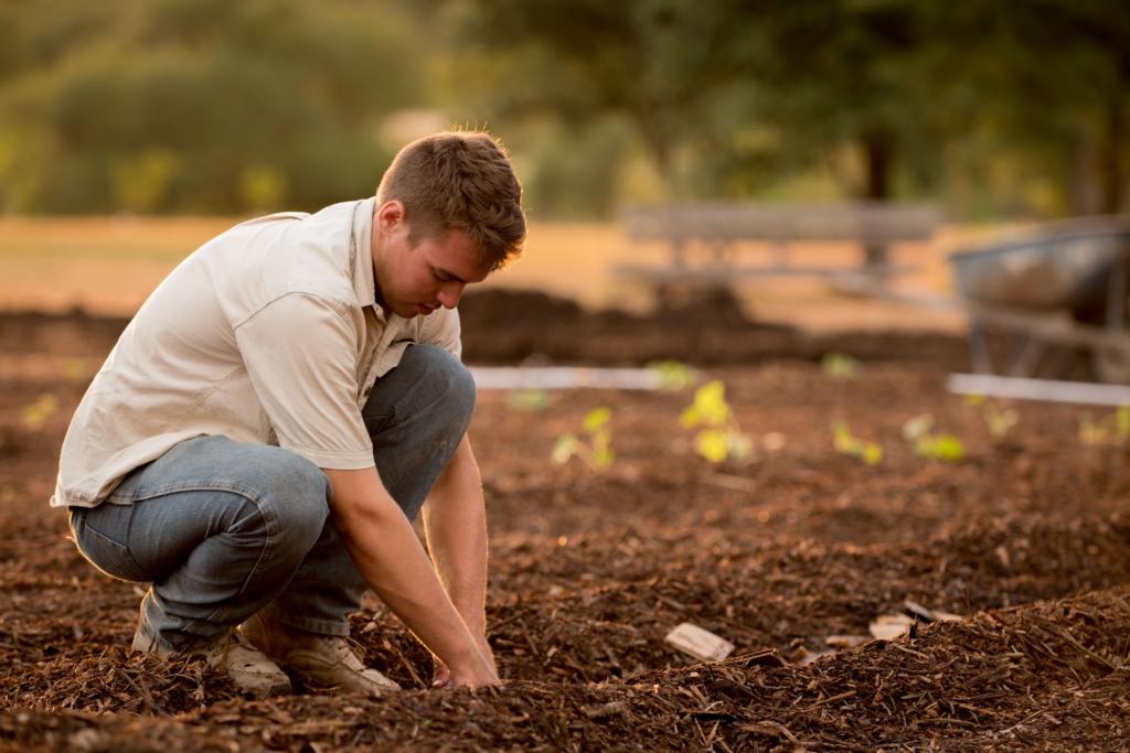 aide à domicile pour le jardinage