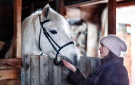 bâtiment pour chevaux