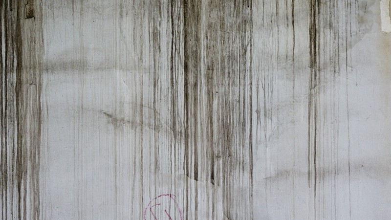 Nettoyage d'un mur extérieur