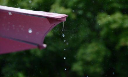 parasol professionnel pour terrasse